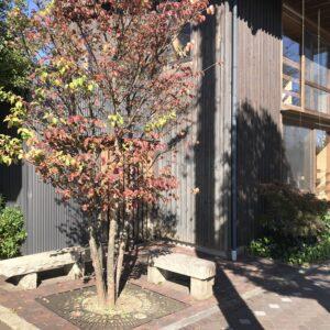 飯田市美容室ジュールフェリエりんご並木エコハウス