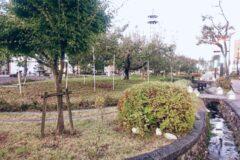 飯田市美容室ジュールフェリエりんご並木1