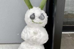 2021年1/11祝成人式次の日大雪で雪だるま雪うさぎをつくりました